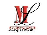 Мета-Логістик